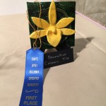 Will Wilson's Ceramic Orchid took First Prize!!