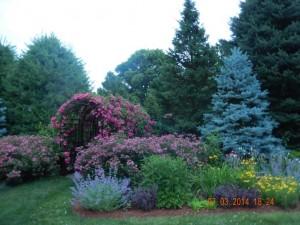 Jones garden