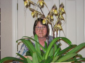 Deb Landry with AOS awarded Paph.